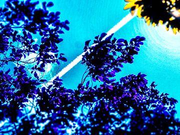 Le ciel si bleu.... sur Pieter van Roijen