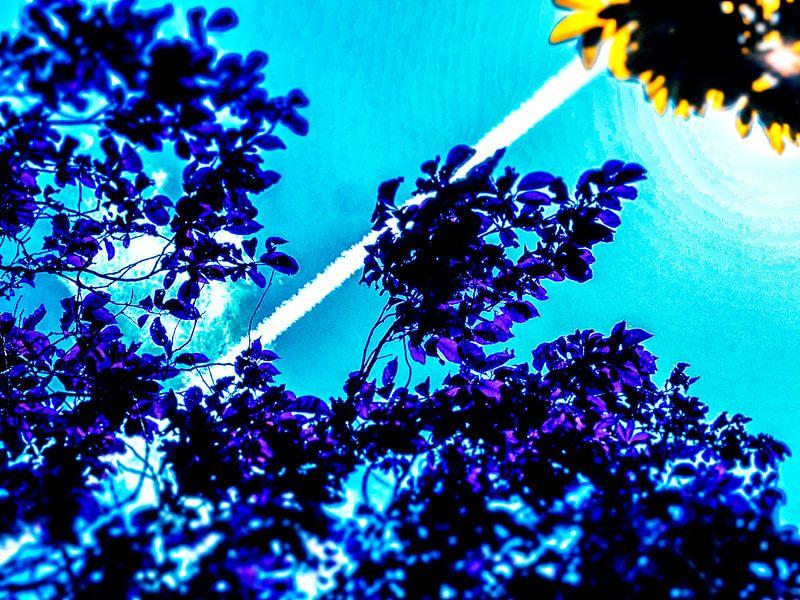 De hemel zo blauw... van Pieter van Roijen