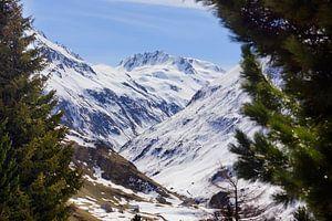 Bergen in Zwitserland bedekt met sneeuw