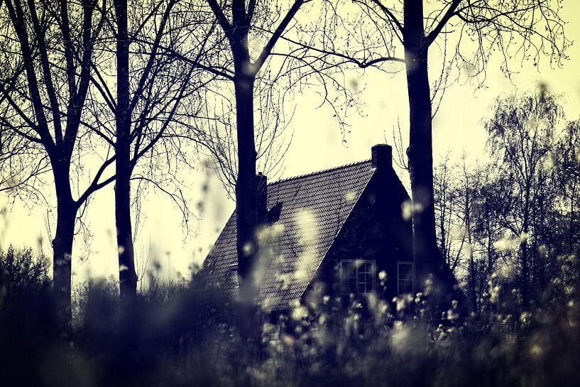 FARM HOUSE van Ans de Bie