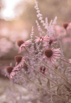 Blumen Teil 199 von Tania Perneel