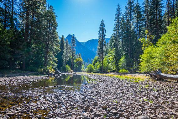 Yosemite river van Ton Kool