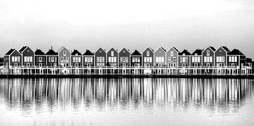 Kleurrijke huizen aan de Rietplas in Houten (zwartwit) van PvdH Fotografie