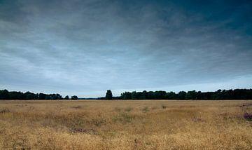 Strabrechtse Heide 124 van Deshamer