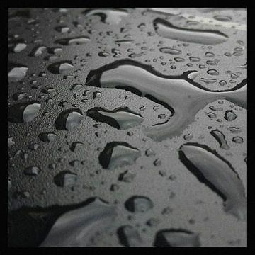 Regen van Kuba Bartyński