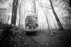 De oude tram uit de mist van