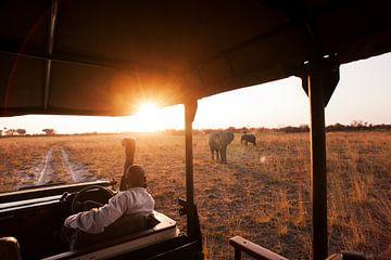 Ultieme safari Botswana van