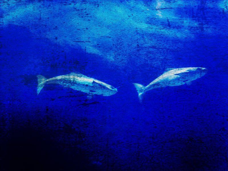 Deep blue ocean van Christiane Baur