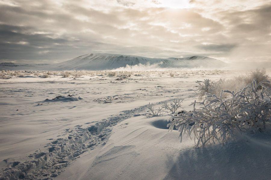 Hverfjell IJsland van Eefke Smets
