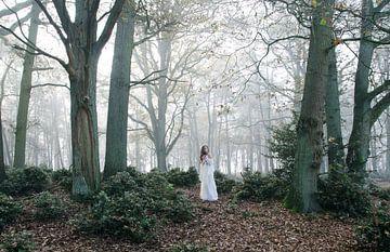 Witte Wieven I van Andrea Loot