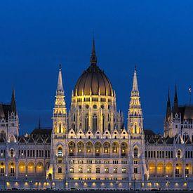 Parlementsgebouwen, Boedapest van Mike Bing
