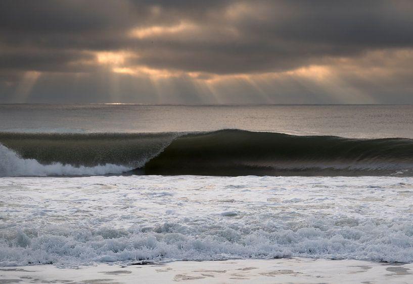 Waves 2 van Wad of Wonders