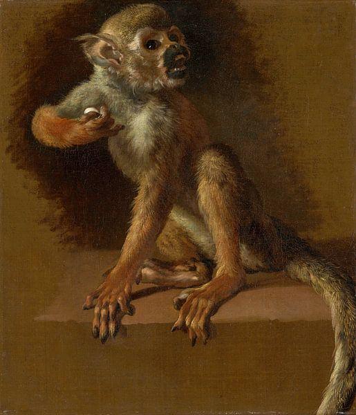 A Seated Monkey, Jan Weenix von Meesterlijcke Meesters
