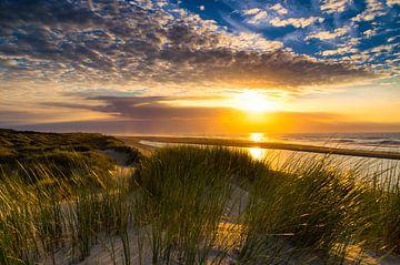 Dune van Thom Brouwer