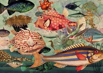 Unterwasser von Jadzia Klimkiewicz