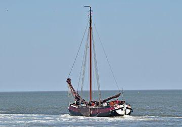 Le navire de la flotte brune Balder