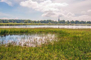 Paysage néerlandais dans le Markdal près de la ville de Breda.