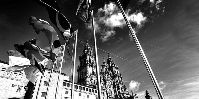 Kathedraal van Santiago de Compostella, Spanje (zwart-wit) van Rob Blok