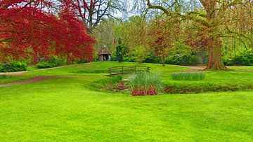 Fairy Park van Caroline Lichthart