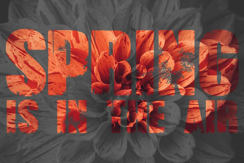 Spring is in the air van Koop je Canvas
