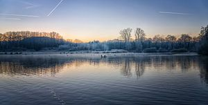 Vogels op het water op een vroege ochtend in december van