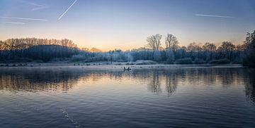 Vogels op het water op een vroege ochtend in december van Pascal Raymond Dorland