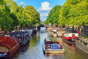Rondvaart Amsterdam in de zomer