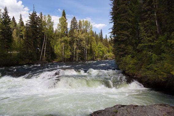 Wilde rivier van DuFrank Images