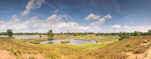 Panorama photo Hatertse et Overasseltse des lacs