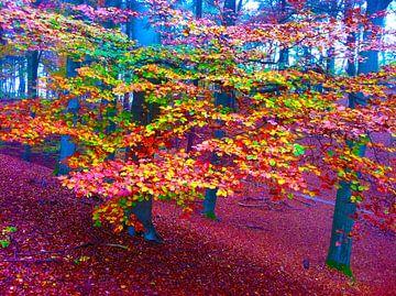Color Leaves van Go van Kampen