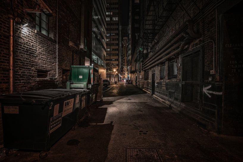 Chicago alley van Reinier Snijders