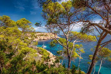 Eenzame baai op Mallorca met zeilboot. van Fine Art Fotografie