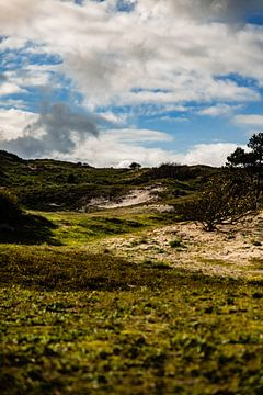 Coepelduinen Duinlandschap Nederland in kleur van Linsey Aandewiel-Marijnen