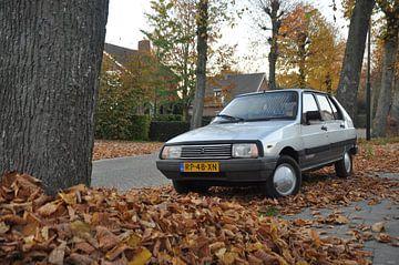 Citroën Visa Leader von Theo Joosten