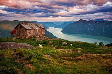 Fjord mit Schafen in Norwegen von Ruud Jansen