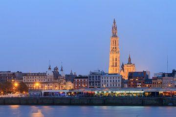 Antwerpen met kathedraal in het blauwe uur