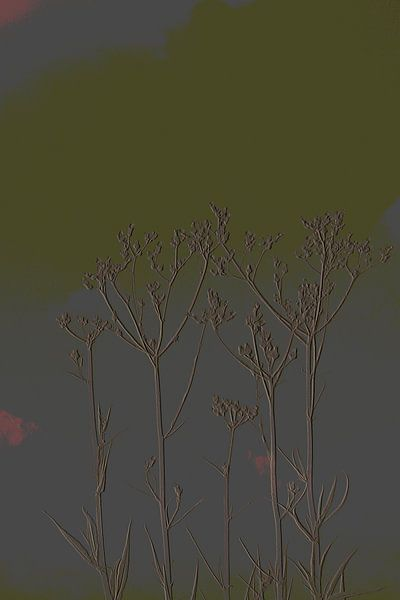 4. Minimalisme, bloemtoppen. van Alies werk