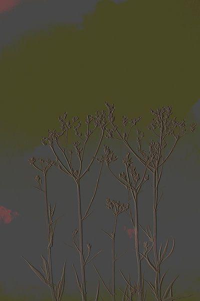 4. Minimalisme, bloemtoppen.