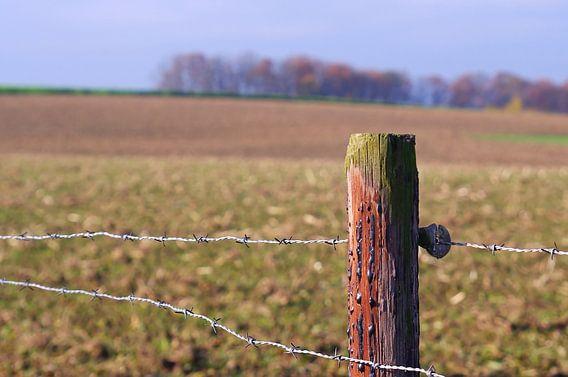 Autumn in Limburg van Marlies Prieckaerts