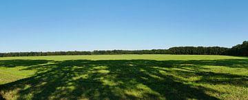 groene vlakte van weilanden van Wim vd Neut