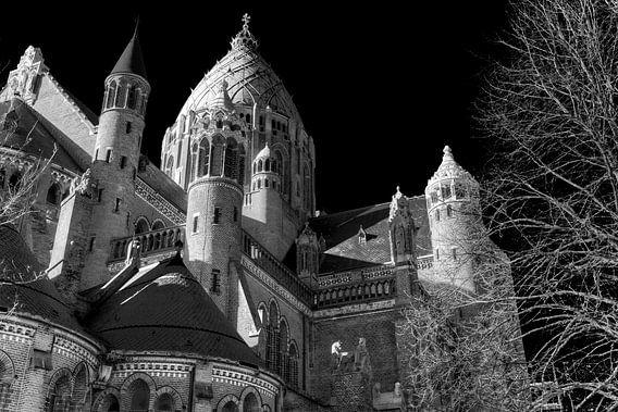 Basilica van Scott McQuaide