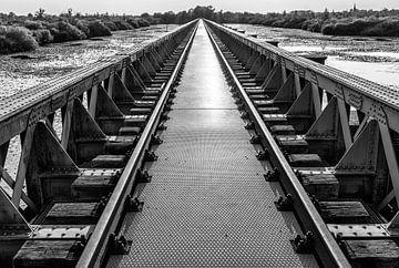 Die B&W Sumpfbrücke von Jurgen Hermse