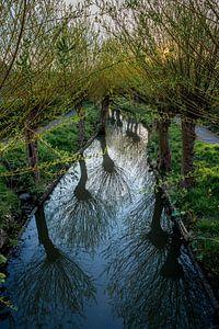 Zicht op de Minstroom bij de Abstederdijk in Utrecht. One2expose Wout Kok Photography