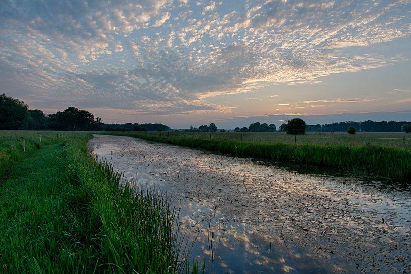 De hemel op zijn kop sur Anneke Hooijer