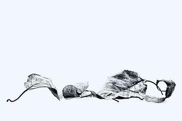 Herbstblätter von Anneliese Grünwald-Märkl