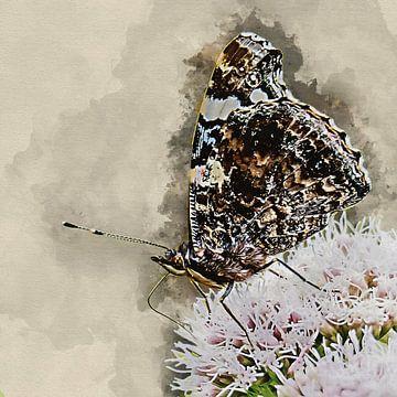 Atalanta vlinder met gesloten vleugels (kunst) van Art by Jeronimo