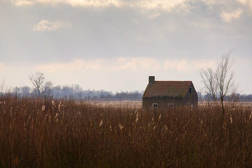 Huisje Tiengemeten van Arjen Roos