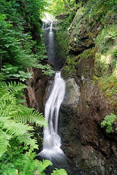 Wasserfall in Glenariff von Babetts Bildergalerie