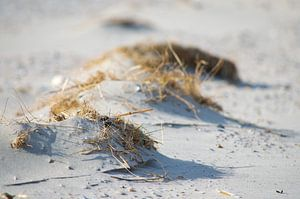 Strand auf Ameland von Willem Holle WHOriginal Fotografie