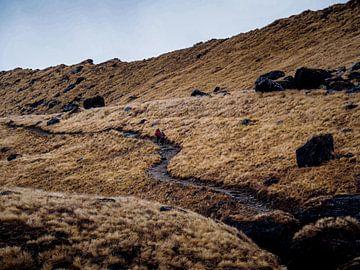 Maanwandeling op Aarde van Rik Pijnenburg